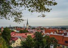 Ciudad vieja Tallinn, Estonia de la visión Imagenes de archivo