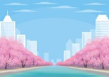 Ciudad y flores de cerezo Imagen de archivo libre de regalías