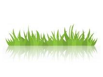 Ciuffi di erba con un'immagine di specchio Elemento naturale di progettazione Immagine Stock Libera da Diritti