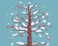 Ciuffolotti su un albero Fotografia Stock Libera da Diritti