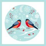 Ciuffolotto che si siede sul ramo innevato della cenere di montagna Cartoline d'auguri di progettazione del nuovo anno e di Natal royalty illustrazione gratis