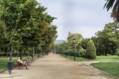 Ciutadella公园的主要步行 库存照片