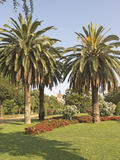 Ciutadella Park. Barcelona Royalty Free Stock Photo