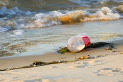 Civière en plastique de bouteille sur la plage Image libre de droits