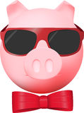 Civil pink pig Stock Photography