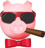 Civil poker pig Royalty Free Stock Photos