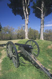 Civil War cannon on green grass at Vicksburg National Military Park, MS Stock Photos