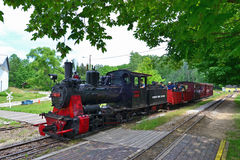 Civil War Day at Hesston Scenic Railroad. Civil war events, iniana tourism, Hesston scenic railroad ad, train ads, travel ads Stock Photo