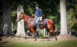 Civil War General on Horseback. Man dressed as a Union General as part of a battle reenactment at  Beauvior, the Jefferson Davis House (confederate White House Stock Photography