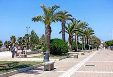 Civitavecchia avenue. Civitavecchia Rome Italy,The main avenue of the city adorned with palm trees bordering the coast stock photography