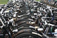 ciy cykel Royaltyfria Bilder