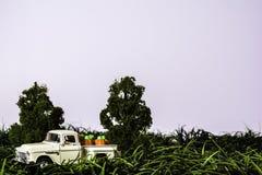 Clásico coja el camión por completo de calabazas Fotografía de archivo