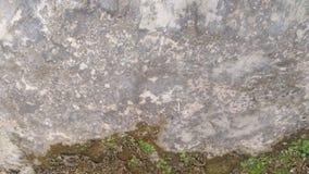 Clássico da parede do cimento fotografia de stock