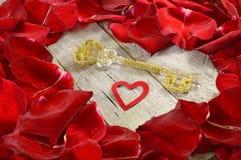 Clé à votre coeur Image stock