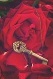 Clé avec le coeur comme symbole de l'amour Image libre de droits
