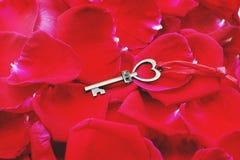 Clé de forme de coeur avec le porte-clés de maison sur le pétale rouge élégant vibrant du fond rose, concept doux d'amour de vale image libre de droits