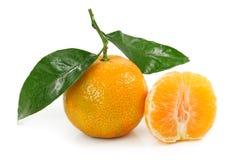 Clémentine orange Photographie stock libre de droits
