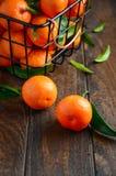 Clémentines fraîches de mandarine avec des feuilles sur le fond en bois foncé photos libres de droits