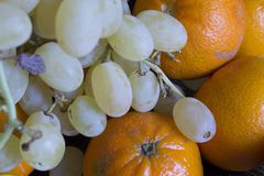 Clémentines oranges et raisins verts Photographie stock