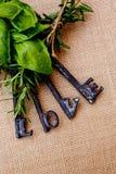 Clés d'amour avec des herbes Image stock