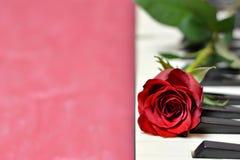 Clés de rose et de piano de rouge Images stock