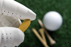 Clínica do golfe Imagens de Stock Royalty Free