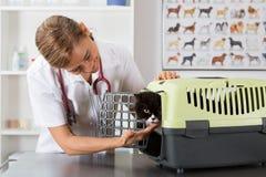 Clínica veterinária Imagem de Stock Royalty Free