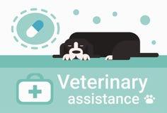 Clínica veterinária do auxílio para a bandeira do serviço do veterinário dos animais de estimação dos animais ilustração royalty free