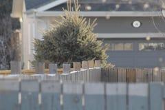clôture photos libres de droits