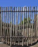 clôture Images libres de droits