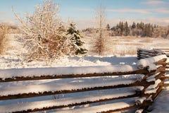 Clôture en hiver image libre de droits