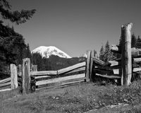 Clôturé le Mt Rainier In Black et blanc Image stock