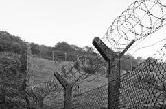 clôture et barbelé de Réseau-tige Photos stock