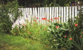 Clôturez les faisceaux en bois blancs, l'herbe verte et les fleurs rouges Images libres de droits