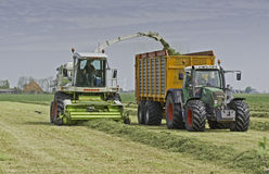 Claas chopper filling Veenhuis silage wagon Stock Image