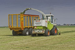 Claas chopper in meadow Royalty Free Stock Images