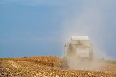 Claas combine harvester working on corn field Royalty Free Stock Image