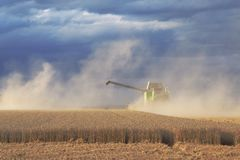 Claas harvester in operation on wheat field royalty free stock photo