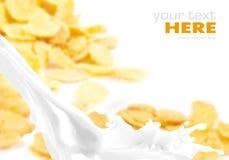 Éclaboussure de lait sur des flocons d'avoine Photographie stock libre de droits