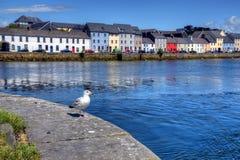 Claddagh戈尔韦在戈尔韦,爱尔兰 图库摄影