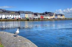 Claddagh戈尔韦在戈尔韦,爱尔兰 库存照片