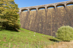 The Claerwen Dam, field in foreground Royalty Free Stock Photography