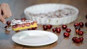 Clafouti de la cereza - clafoutis dulces franceses tradicionales del postre de la fruta con las cerezas almacen de video