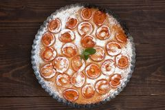 Clafoutis абрикоса Стоковое Изображение RF