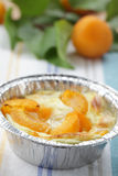 Clafoutis with apricot Stock Photography