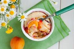 Clafoutis d'abricot Photos libres de droits