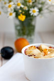 Clafoutis d'abricot Image stock