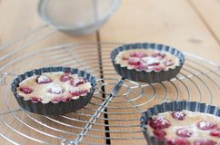 Clafoutis Royalty Free Stock Images