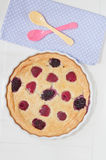 Clafoutis with fresh berries Stock Photography