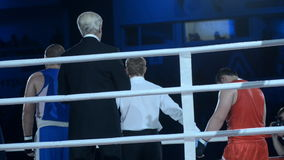 Claiming winner in boxing match stock video footage
